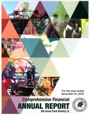 Comprehensive Financial Annual Report 2016