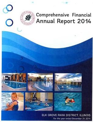 2014 Comprehensive Financial Annual Report